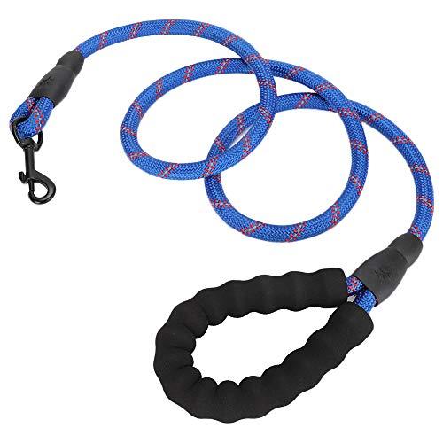 JYLSYMJa Correa para Gatos, Correa de Nailon con Hebilla de Metal, Elegante y Hermosa Cuerda de tracción Reflectante para Perros, Azul, Longitud 153 cm/60,2 Pulgadas(Azul)