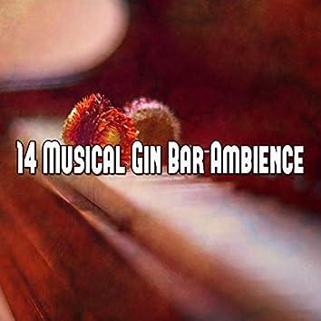 14 Musical Gin Bar Ambience