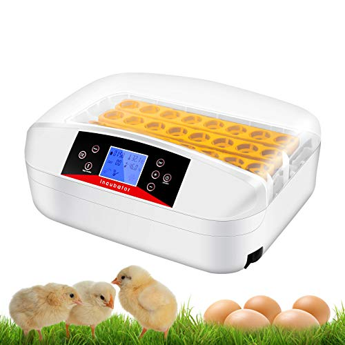 Digital Clear Egg Incubator with Automatic Egg Turning and Humidity & Temperature Control, LED...
