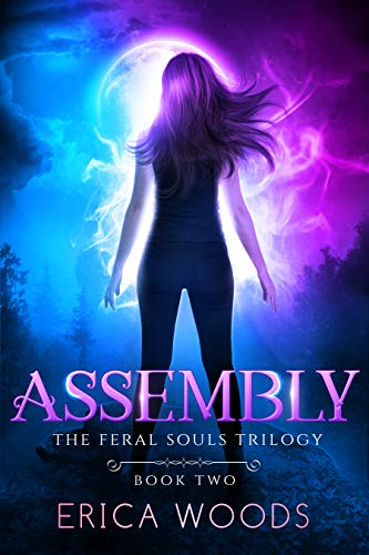 Assembly (The Feral Souls Trilogy - Book 2) (English Edition)