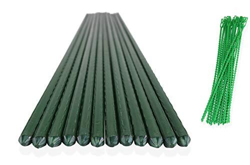 ClausHavn - Paquete de 12 Tutores de Metal Plastificado Verde para Jardín...