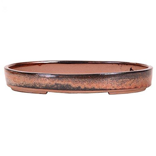 Bonsai 51007 Bol ovale en cuivre 25 x 18 x 4 cm