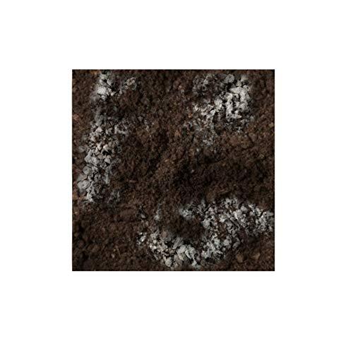TERRICCIO SUBSTRATO per Piante GRASSE - Piante grasse Speciale Mix di Torba Sabbia e Breccia drenante con PH Neutro per Cactacee e succulente piate grasse in Generale - 4L