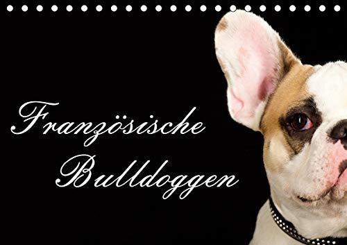 Französische Bulldoggen (Tischkalender 2021 DIN A5 quer)