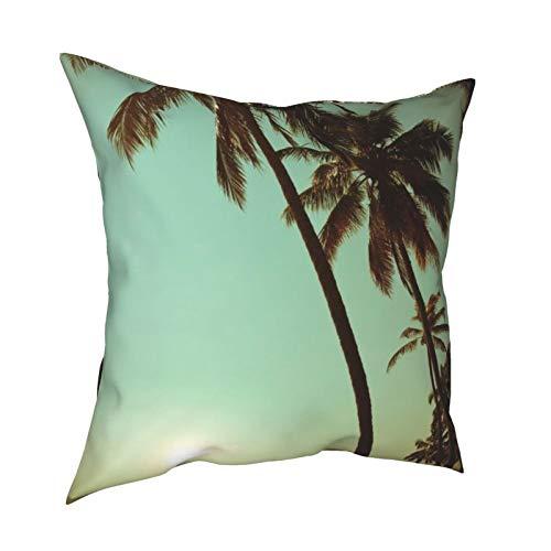 iksrgfvb Throw Pillow Case Fundas de cojín Nature Beach Coconut Tree Paisaje Fundas de Almohada cuadradas para Sala de Estar Sofá 18 x 18 Pulgadas