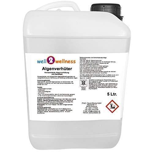 Pool Algenverhüter/Algenvernichter 5,0 l - konzentriert + schaumfrei