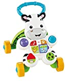 Fisher-Price Mattel DLD84 - Cebra Parlanchina...