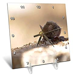3dRose Stamp City - Animals - Photograph of a Field Mouse Resting on a Tree Stump. - 6x6 Desk Clock (dc_306501_1)