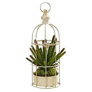 Silk Flower Arrangements Nearly Natural 15in. Cactus Succulent Artificial Decorative Cage Silk Plants, Green