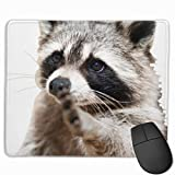 Smart Animals Racoon Mousepad Non-Slip Rubber Gaming Mouse Pad Rectangle Mouse Pads for Computers Laptop (11.8X9.8 Inch)