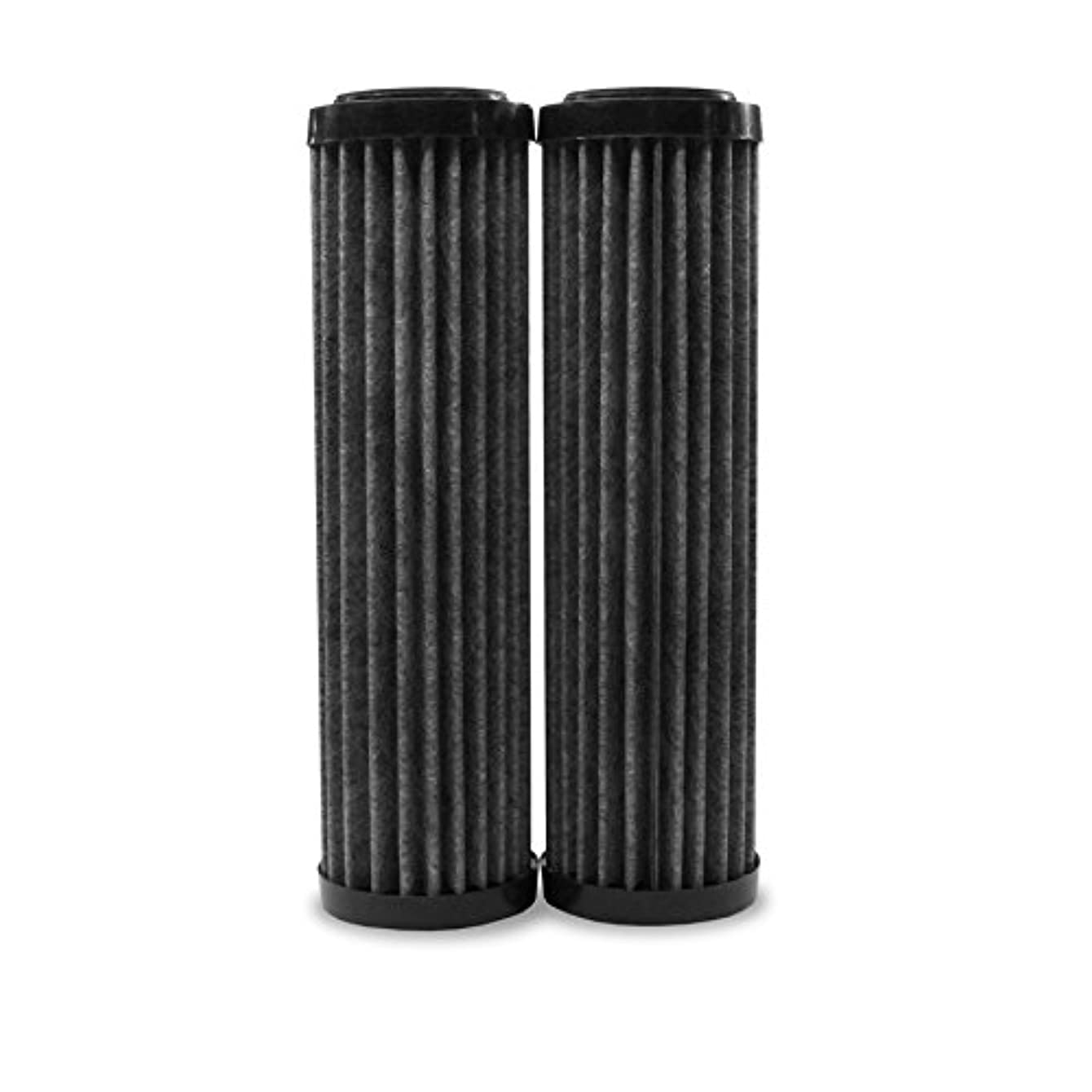 EcoPure EPW2F Premium Fact Universal Whole Home Filter (2 Pack)
