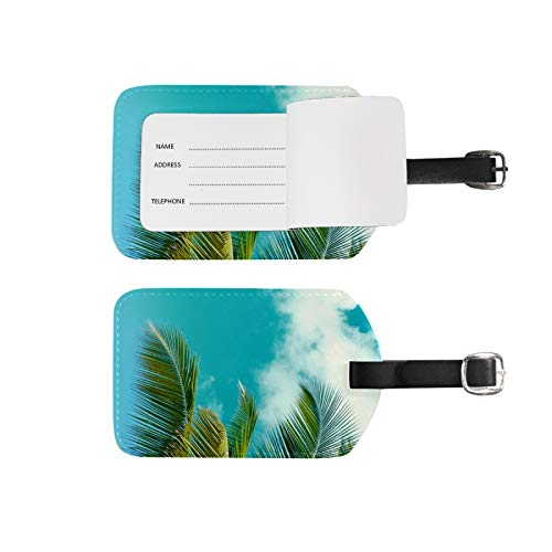 Luggage Tags Address Name Holder,2Pcs Portable Identifier Label Set Checked Card Bag Decoration Travel Gear Gifts,Tropical Summer Beach Palm Leaf Tree for Suitcases Bags
