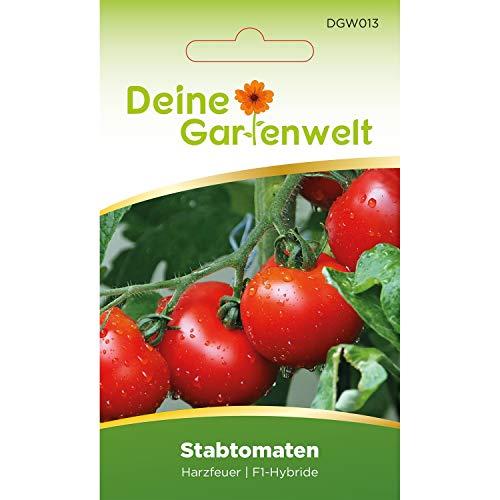 Stabtomaten Harzfeuer F1 Tomatensamen | Samen für Tomaten | Stabtomatensamen | Saatgut für Harzfeuertomaten