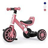 XJD 3 EN 1 Triciclo para Niños Bicicleta para bebé 1-3 años con Pedales...