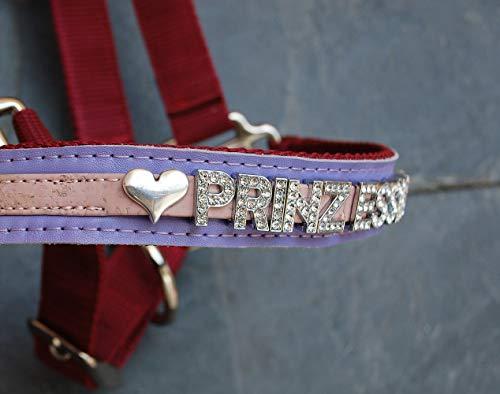 GlücksHucke Pferde-Halfter personalisierbar mit Namen, Strass Buchstaben, Namensschild 'Princess' in Burgunder-Rot & Lila (5-8 Buchstaben, Vollblut)
