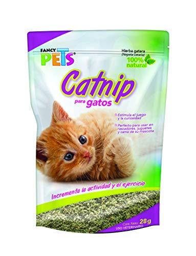 planta para gatos de la marca Fancy Pets