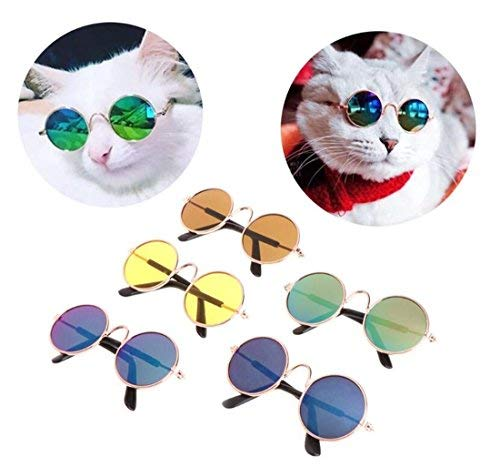 JKLYZXS Katze Mode Brille Hunde Coole Sonnenbrille Haustier Fotos Gläser Requisiten (Farbe zufällig)