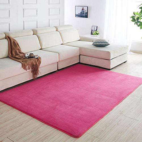160 x200 Kortharig koraal fluwelen tapijt woonkamer vloermat salontafel mat slaapkamer deken bed vloerkleed vloermat deurkussen, 4,50 x80cm