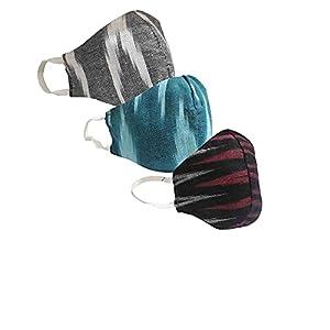 Riyashree Cotton reversible cloth face mask 3-layer reusable washable & breathable Ikat printed stylish mask for men…