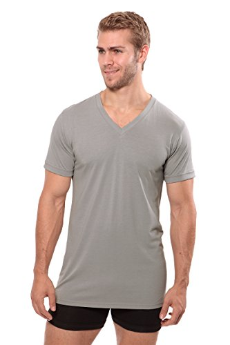 Texere Men's V-Neck Luxury Undershirt (Meio, Light Gray, M) Best Underwear