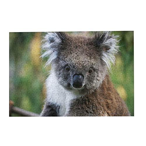 Puzzle 300 Teile Koala Puzzle Holzpuzzle für Erwachsene Familien und Kinder Puzzle Spiel Dekompression Spielzeug