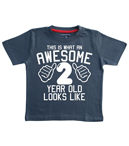 Edward Sinclair 2-3 Years Navy T-Shirt This is What an Awesome 2 Year Old Looks Like