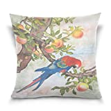 Funda de almohada decorativa cuadrada para cojín, diseño vintage de loros en árboles, frutas, sofá cama, funda de almohada de 26 x 26 pulgadas