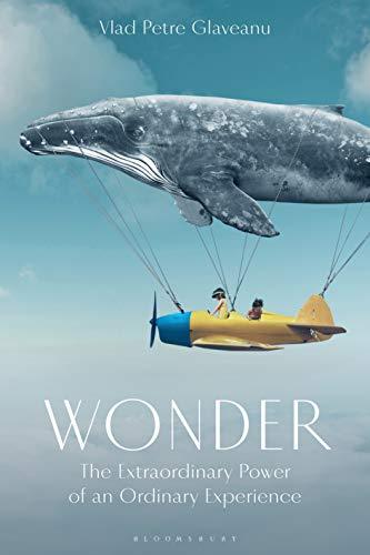Wonder: The Extraordinary Power of an Ordinary Experience