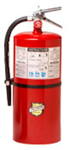 Buckeye 12905 ABC Multipurpose Dry Chemical Hand Held Fire Extinguisher with Brass Valve Chrome Plated and Wall Hook, 30 lbs Agent Capacity, 7-1/2