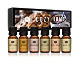 P&J Trading Fragrance Oil | Cozy Home Set of 6 - Scented Oil for Soap Making, Diffusers, Candle Making, Lotions, Haircare, Slime, and Home Fragrance