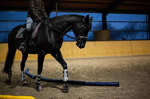 Longier-Hilfe für Pferde, blau & gelb, 4 Stk., 2,8m lang, Pferdeausbildung, Richtläufer, Bodenarbeitshindernis, Hindernis-Stangen - 6
