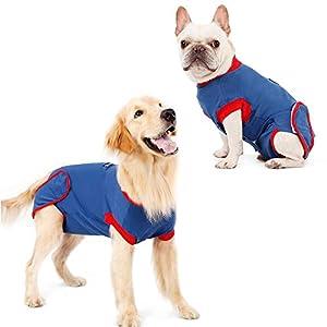 Combinaison de récupération pour chien - Protection abdominale professionnelle pour plaie - Col en E - Alternative pour chiot - À porter après une chirurgie - Anti-léchage et soulagement de l'anxiété