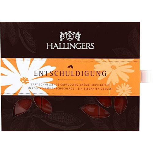 Hallingers Vollmilch-Schokolade mit Cappuccino hand-geschöpft (90g) - Entschuldigung (Tafel-Karton) - zu Entschuldigung
