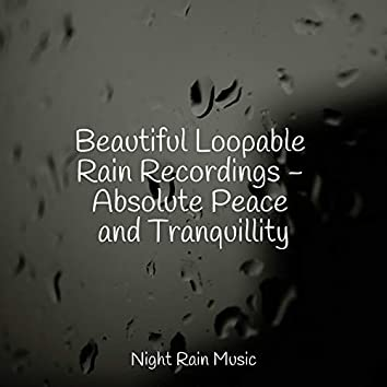Beautiful Loopable Rain Recordings - Absolute Peace and Tranquillity