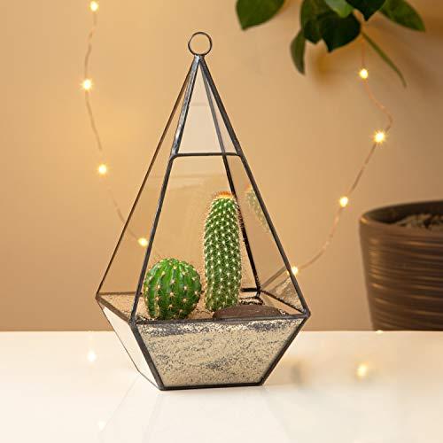 UltraByEasyPeasyStore Driehoek Glas Terrarium Planter Voor Luchtplanten Cactus Kleine Vetplanten & Bruiloft Tafel Centrepiece of Gift Geometrische & Swing Deksel 12x12x23.7cm