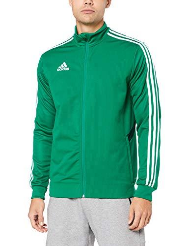 adidas Herren TIRO19 TR JKT Sport Jacket, Bold Green/Collegiate Green/White, XL