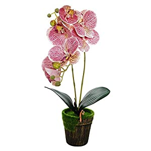 U/N Artificial Orchid Flowers with Vase Real Touch Fake Phalaenopsis Flower Arrangement Vintage Bonsai
