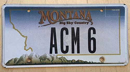 EpochSign Montana Vanity - Placa de matrícula de 6 x 12 Pulgadas de Al Art Alan ANN Martin Miller Marshall