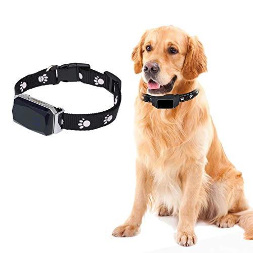 Inteligente Localizador GPS Collar, Tiempo Real Anti-Pérdida GPS Tracker,para Perros Gatos ocalizador de Alarma