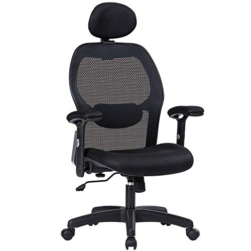 LIANFENG Ergonomic Office Chair, High Back Executive Swivel Computer Desk Chair with Adjustable Armrests and Headrest, Back Lumbar Support, Black… (Black)