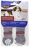 TRIXIE 2 Calcetines Perro, Antideslizante, XS-S, Gris, Perro