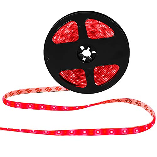 XKTTSUEERCRR Waterproof Blue LED 3528 SMD 300LED 5M 16.4Feet Flexible Light Strip 12V 2A 24W 60LED/M (Red)