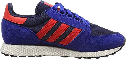 Adidas Forest Grove Fitnessschoenen voor heren, blauw