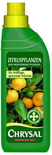 Chrysal Flüssigdünger Zitruspflanzen, 500 ml