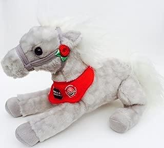 Shamrock Tournament of Roses Wells Fargo Pony