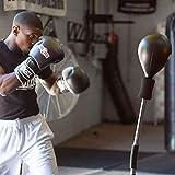 Ringside Cobra Reflex Free-Standing Adjustable Boxing Fitness Workout Punching Bag (New Version)