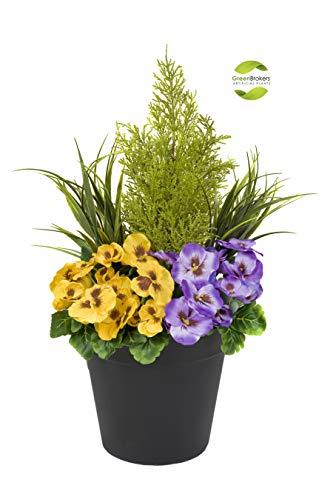 Greenbrokers Limited Fioriera Artificiale (60 cm) con Viole Gialle e Viola e conifero/Cedro Arte topiaria in Vaso Nero