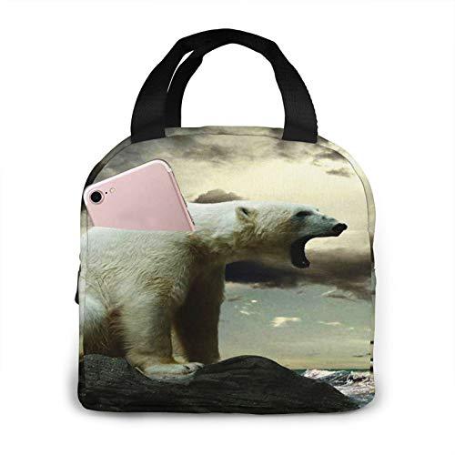 Bolsa Termica Comida Trabajo Almuerzo Porta Alimentos Infantil Niños Oficina Bolsa Calor Hombres Mujer Hielo de oso polar