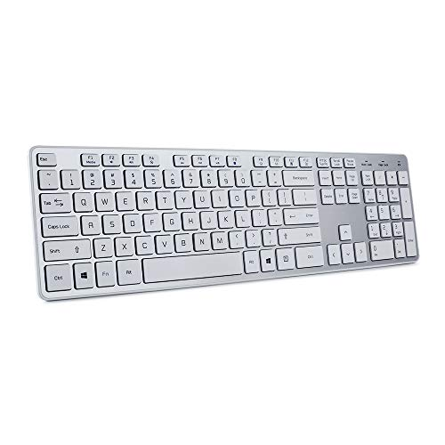 BFRIENDit Wireless Keyboard Ultra - Quiet Chocolate Keys 2.4GHz Connection Slim Wireless Computer Keyboard for Windows 10/8/7/Vista, Microsoft & PC, Smart TV, RF1430K - Silver…