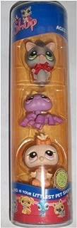 Littlest Pet Shop Halloween Friends - Spider #430, Owl #431, Sugar Glider #432